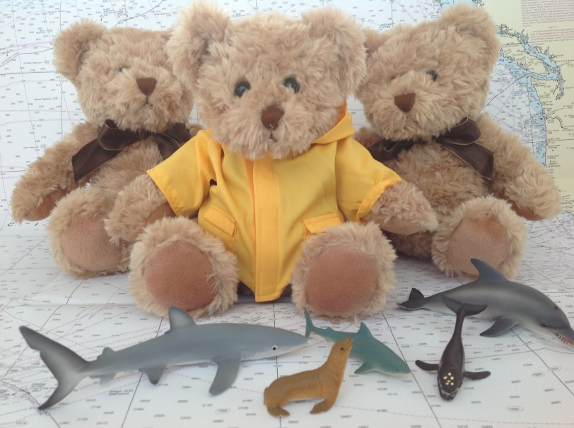 Fourbirdsaboating Team Mascot provided by the world famous Asquiths teddy bear shop in Henley-On-Thames.